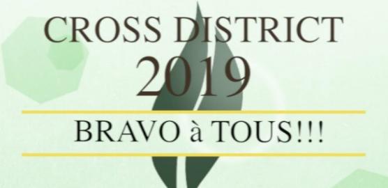 Cross district Est 2019