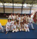Judokas de Mahina en compétition ce samedi 16/11