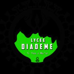 PROMOTION DES FORMATIONS AU LYCÉE DIADÈME